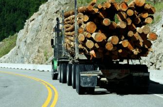 Logging truck on highway